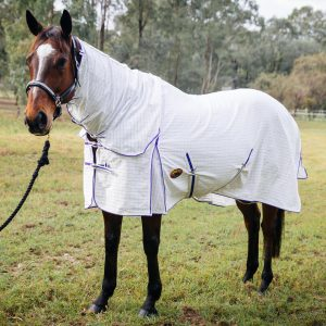 cotton horse gear, cotton horse rugs