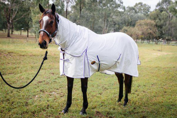 cotton horse gear, cotton horse rugs