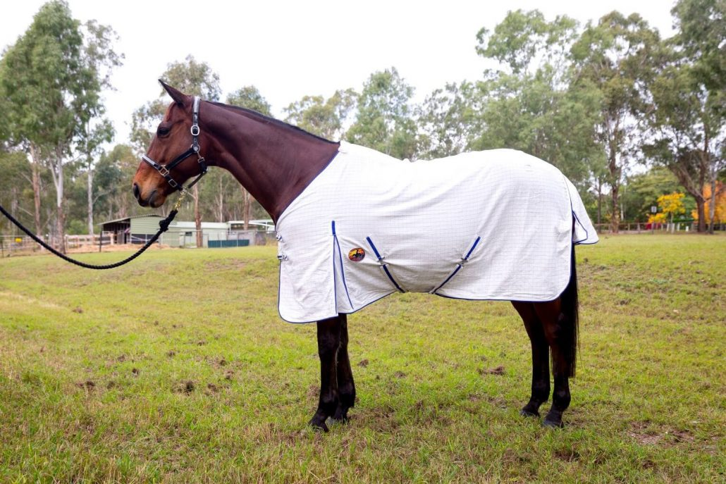 cooler rugs, exercise rugs, summer sheets