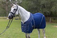 hooded horse rugs toowoomba