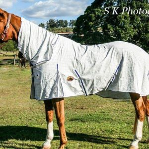 cotton horse rugs, horse rugs online