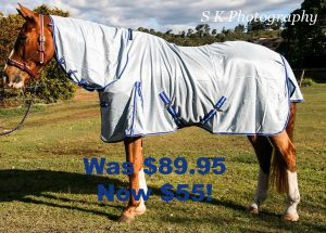 Quality horse rugs