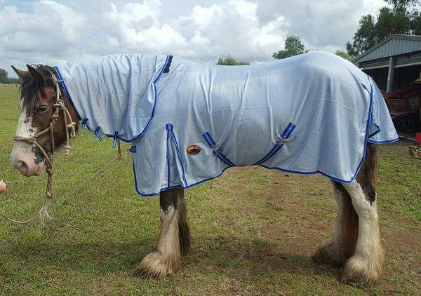 Horse rugs, pony rugs, personalised horse rugs