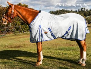 Air mesh horse rugs