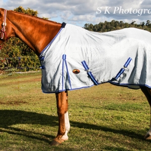 430 GSM Air mesh horse rugs