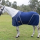 horse fleece rugs, horse rugs, fleece horse gear