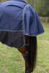 rainsheet horse, rain sheet horse rugs, rain sheet combo horse rugs