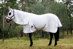 horse rugs, hooded horse rugs