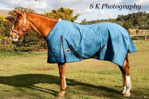 canvas rugs, canvas horse rugs