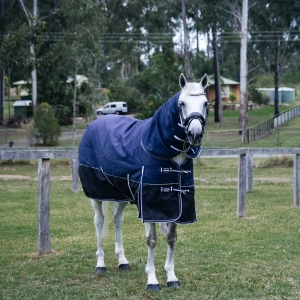 horse rugs, winter horse rugs, summer horse rugs