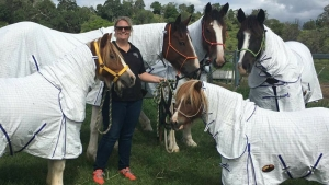 Lenna, Bang For Your Buck Horse Gear