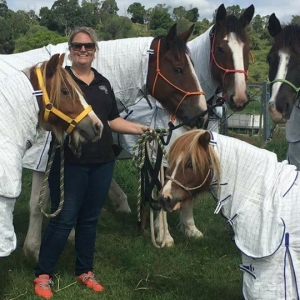 Lenna, Bang For Your Buck Horse Gear