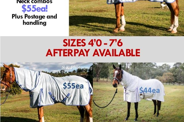 summer horse rugs
