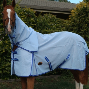 Horse rugs, horse gear, horse,