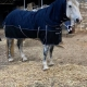 winter horse rugs australia